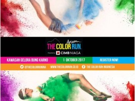 Color Run for website